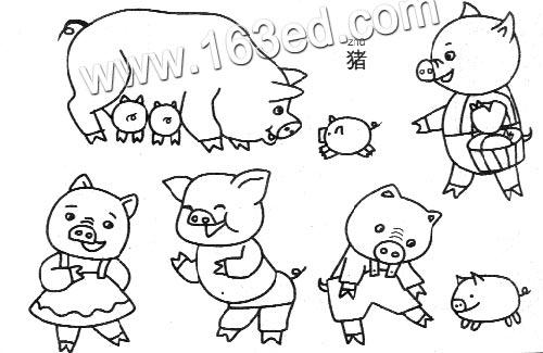 动物简笔画 猪2
