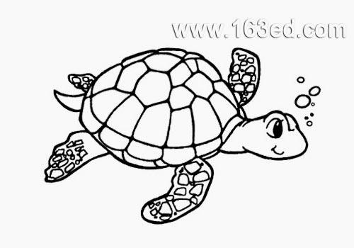 水生动物简笔画:乌龟-简笔画网; 简笔画-游泳的乌龟.