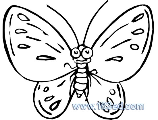 蜜蜂采蜜简笔画,蜜蜂采蜜简笔画图片,简笔画蜜蜂采蜜 图,简笔画蝴蝶采图片