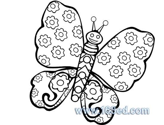 蝴蝶生长周期简笔画