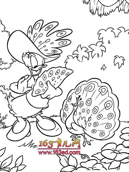 幼儿园迪士尼唐老鸭简笔画图片 - 唐老鸭 - 儿童简笔画图片大全