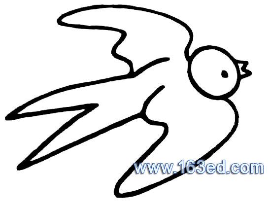 鸟类简笔画 燕子5