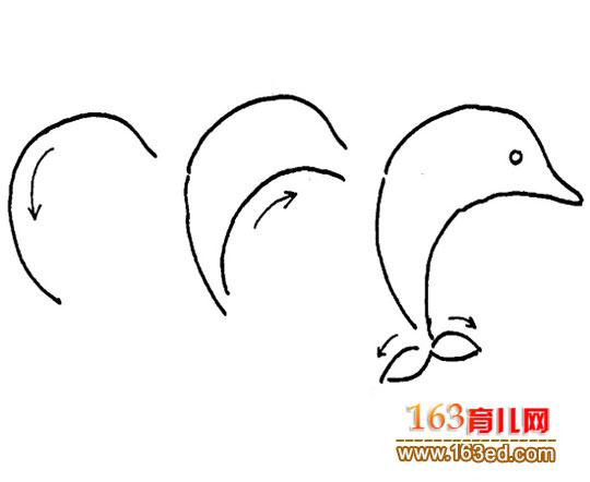 海豚简笔画图片大全; 中国结的简笔画的画法