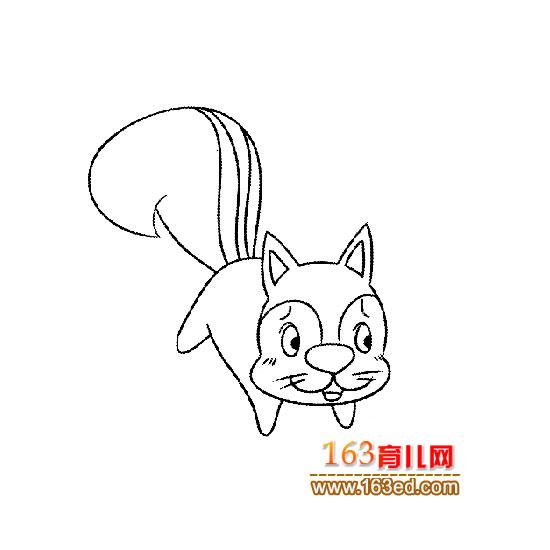 动物简笔画 一只可爱的松鼠9