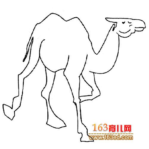 奔跑的骆驼 动物简笔画 3