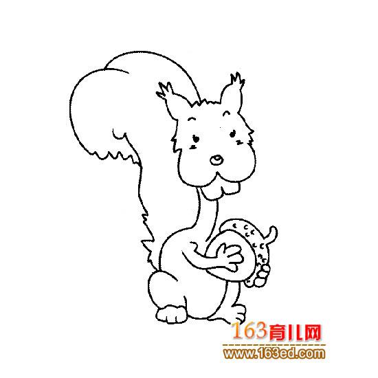 简笔画 吃东西的小松鼠2