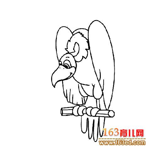 开心的老鹰简笔画