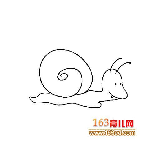 一只爬行的蜗牛│昆虫简笔画