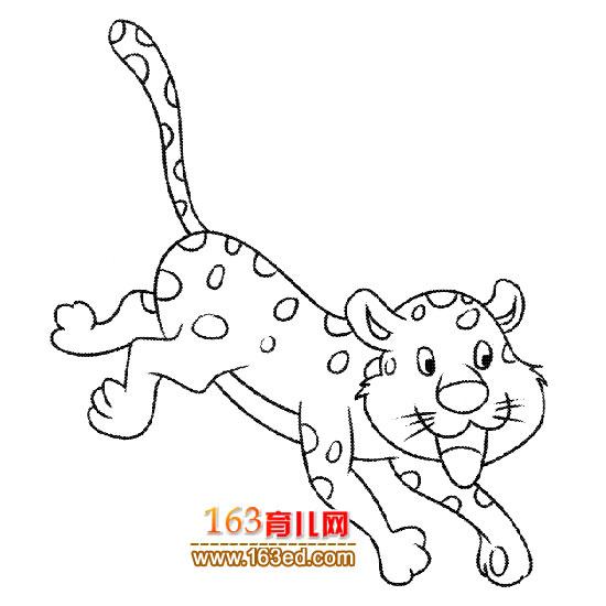 动物简笔画 可爱的豹子2