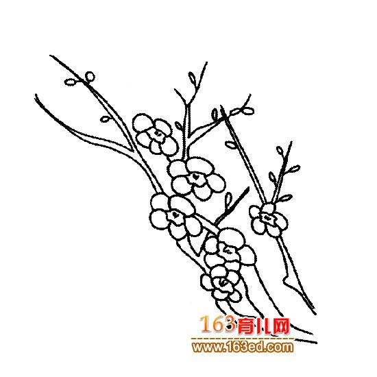 简笔画 冬天的梅花4