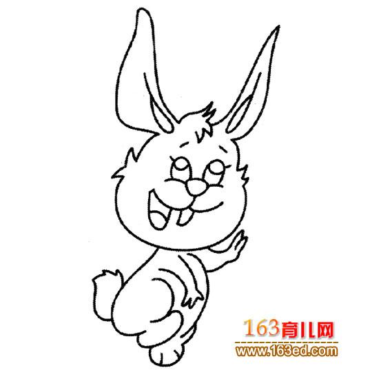 简笔画 快乐的兔子2