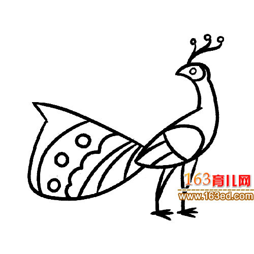 简笔画 散步的孔雀2