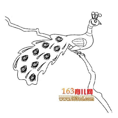 简笔画/简笔画:枝头的孔雀