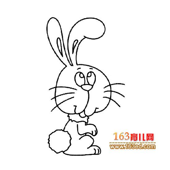 小兔子简笔画图片大全,卡通小兔子简笔画图片,小兔子简笔画图片奔跑