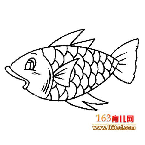 画图片大全/可爱的海豚图片简笔画/螃蟹的简笔画图片大全 卡通鱼吐