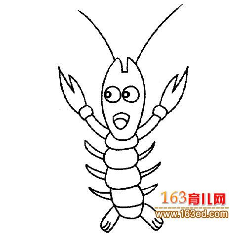 简笔画│卡通龙虾5