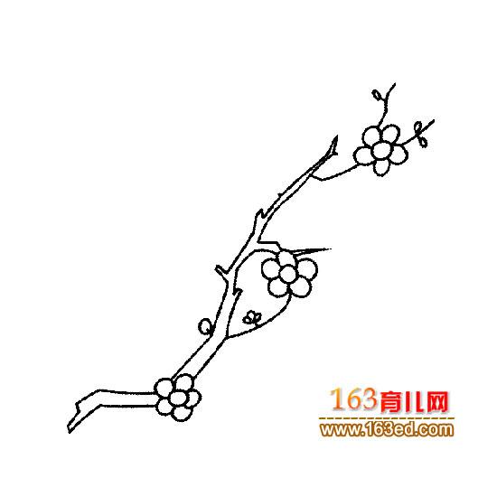 夸张花卉简笔画内容图片展示