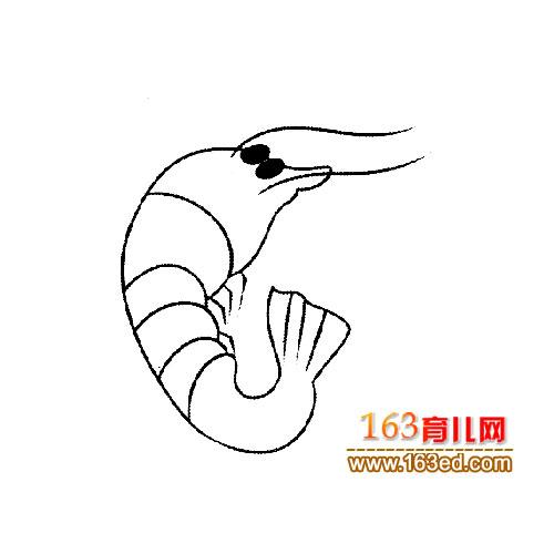 龙虾简笔画:小米虾5