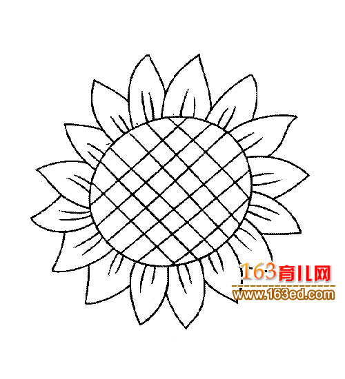简笔画:葵花2—简笔画网