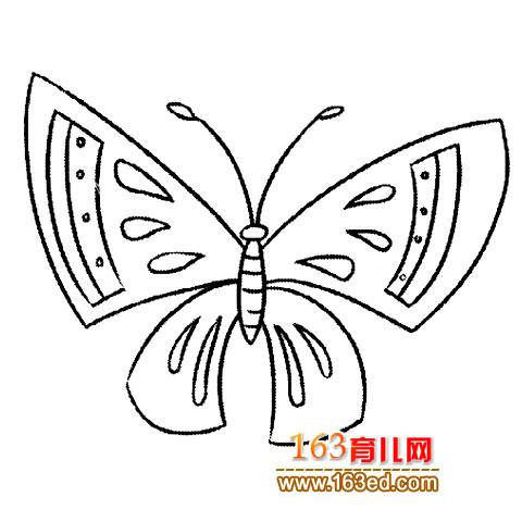 简笔画│美丽的蝴蝶3—简笔画网图片