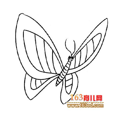 挥动翅膀的蝴蝶│简笔画1