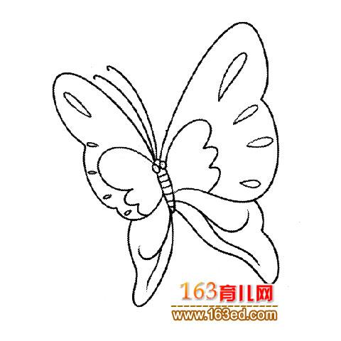 蝴蝶简笔画 自由飞翔 2