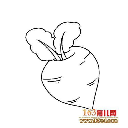 红萝卜 简笔画