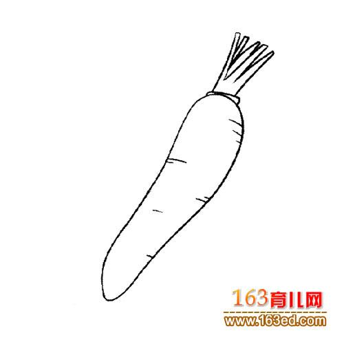 胡萝卜 简笔画