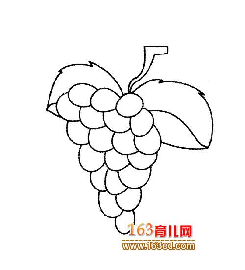 一串葡萄的简笔画_一串葡萄叶子简笔画