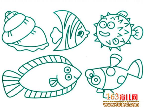 水生动物简笔画 各种各样的鱼图片