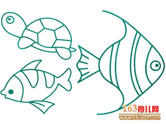 海马小动物简笔画展示