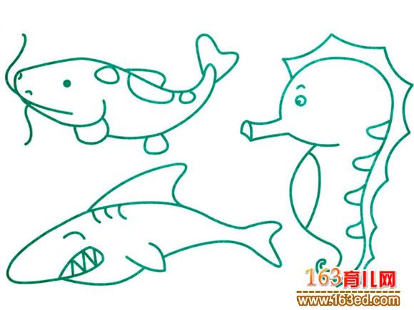 水生动物简笔画 海鱼