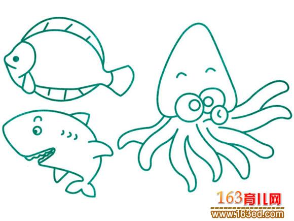 水生动物简笔画 海鱼和乌泽