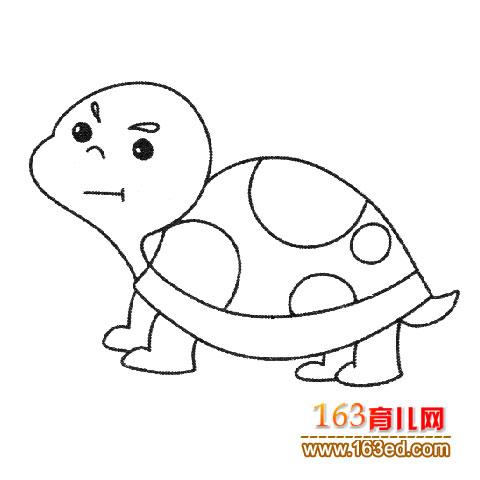 幼儿简笔画:乌龟宝宝