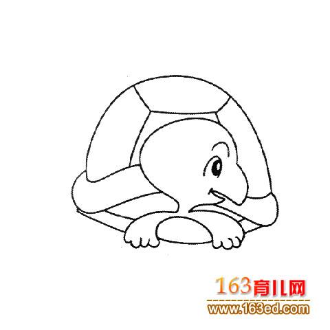 幼儿简笔画:一只乌龟