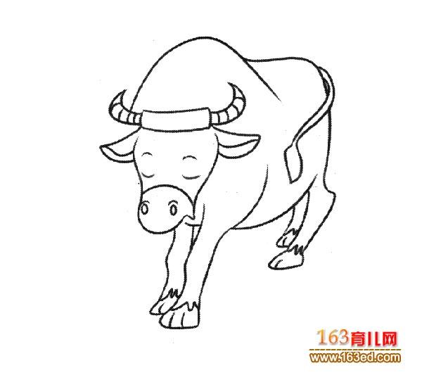 幼儿简笔画图片 一头强壮的黄牛4