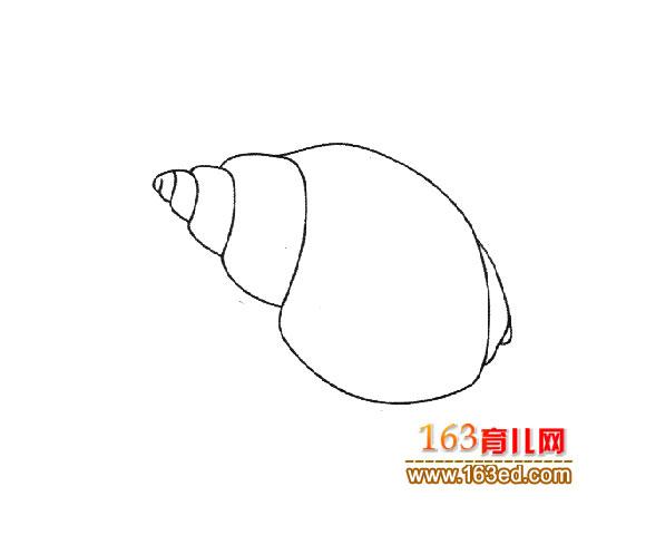 亮的海螺_幼儿简笔画图片2 贝壳简笔画-漂亮的大树简笔画图片大全
