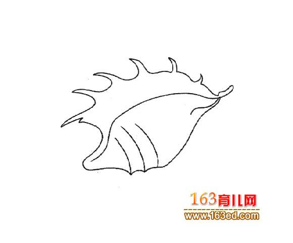 贝壳简笔画_儿童简笔画图片3