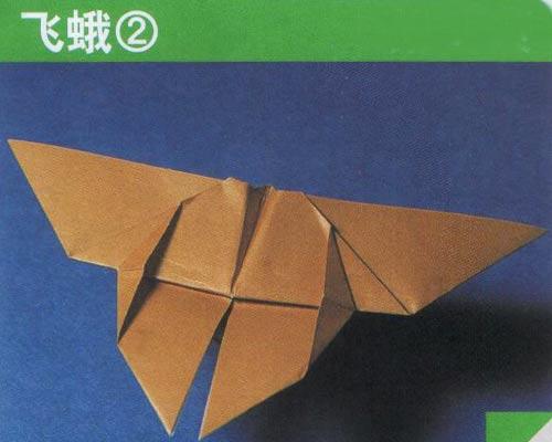 幼儿手工折纸图解:飞蛾2