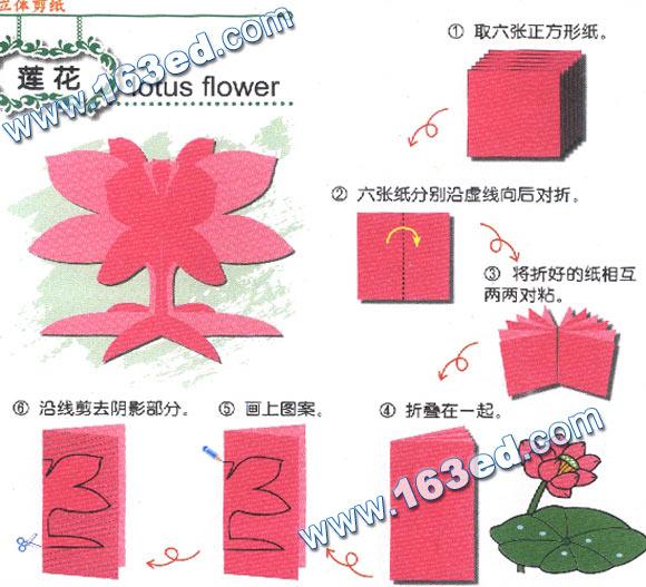 幼儿手工剪纸图案 仙人掌; 幼儿手工立体剪纸:毽子; 幼儿手工剪纸图案