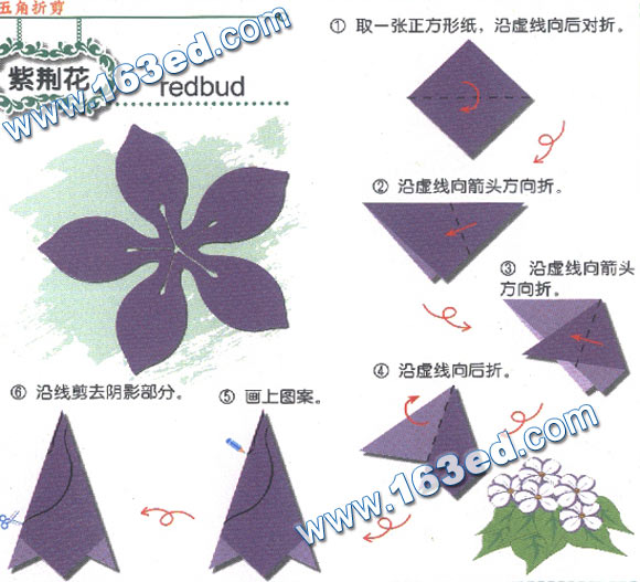 幼儿手工剪纸图案:紫荆花 儿童手工制作网