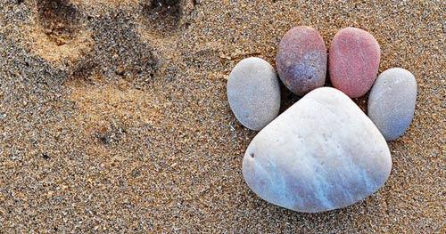 幼儿手工:鹅卵石摆成的的小脚丫