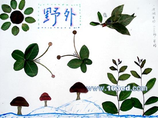 树叶粘贴画孔雀各种做法_可可 树叶粘贴画:熊猫和竹子-幼儿园教案网