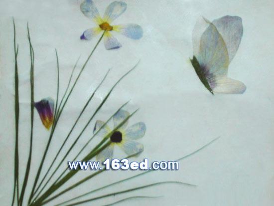 树叶粘贴画昆虫篇 蝴蝶9 树叶贴画 -树叶粘贴画昆虫篇 蝴蝶9