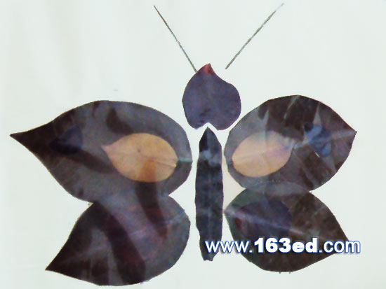树叶粘贴画昆虫篇 蝴蝶13 树叶贴画 -树叶粘贴画昆虫篇 蝴蝶13