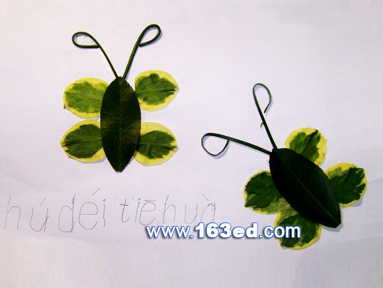 树叶粘贴画昆虫篇:两只蝴蝶