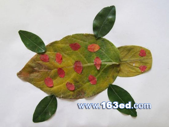 树叶粘贴画游鱼篇:乌龟8