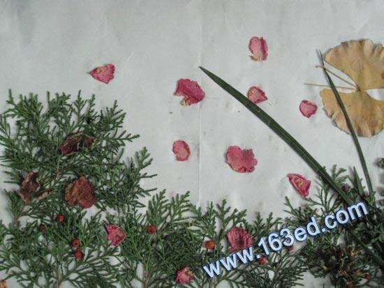 幼儿树叶粘贴画:风景6—树叶贴画