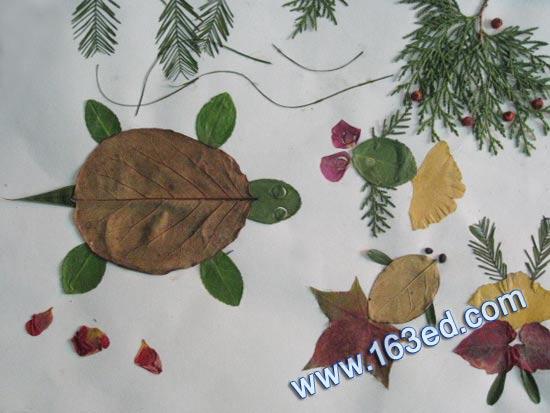 幼儿树叶粘贴画:乌龟和鱼1—树叶贴画