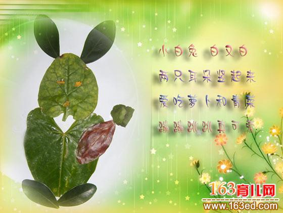 兔子吃萝卜2│树叶贴画图片;;; 小白兔(树叶粘贴画)—树叶贴画; 小
